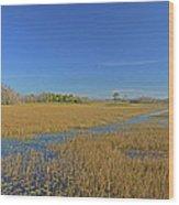 35- Grassy Waters Wood Print