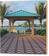 36- Palm Beach Inlet Wood Print