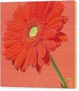 3990-001 Wood Print