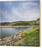 Atlantic Coast In Newfoundland Wood Print by Elena Elisseeva