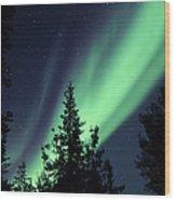 Aurora Borealis Above The Trees Wood Print