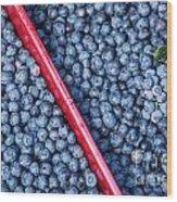 Blueberry Harvest Wood Print