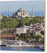 City Of Istanbul Wood Print