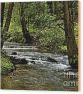 Craig Run Monongahela National Forest Wood Print