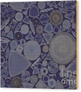 Diatoms Wood Print by M. I. Walker