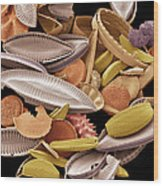 Diatoms, Sem Wood Print by Steve Gschmeissner