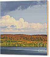 Fall Forest And Lake Wood Print