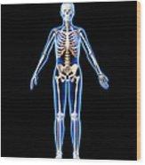 Female Skeleton, Artwork Wood Print