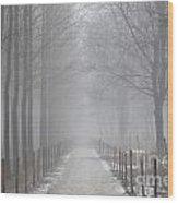 Foggy Road Wood Print