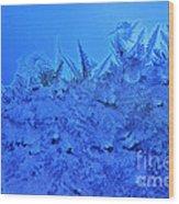 Frost On A Windowpane Wood Print by Thomas R Fletcher
