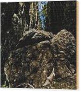 Helvetinkolu Wood Print