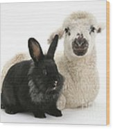 Lamb And Rabbit Wood Print