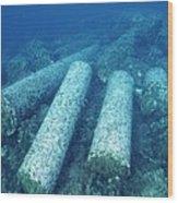 Marine Archaeology Wood Print