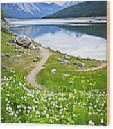 Mountain Lake In Jasper National Park Wood Print