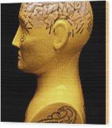 Phrenology Bust Wood Print