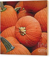 Pumpkins Wood Print by Elena Elisseeva