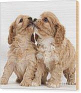 Puppies Wood Print