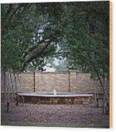 Small Fountain At Tcu Wood Print