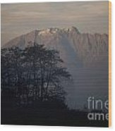 Snow-capped Mountain Wood Print