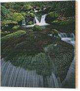 Tennessee, United States Of America Wood Print