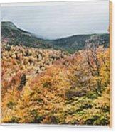 White Mountain's Gold Wood Print