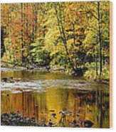 Williams River Autumn Wood Print