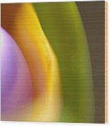 Abstract Colored Forms And Light Wood Print