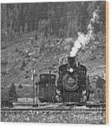 482 In Silverton - Bw Wood Print