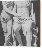 Aesculapius, Greek God Of Medicine Wood Print