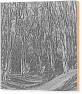 Ambresbury Banks  Wood Print