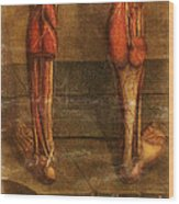 Anatomie Generale Des Visceres Wood Print