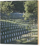 Arlington National Cemetery, Arlington Wood Print