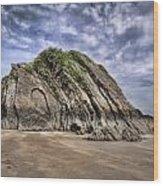 Goscar Rock Tenby Wood Print