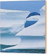 Icebergs, Canada Wood Print