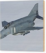 Luftwaffe F-4f Phantom II Wood Print