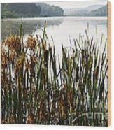 Misty Morning Big Ditch Lake Wood Print