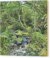 Native Bush Wood Print by MotHaiBaPhoto Prints