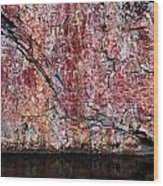 Painted Rocks At Hossa With Stone Age Paintings Wood Print