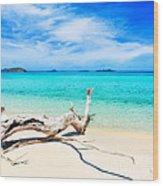 Tropical Beach Malcapuya Wood Print