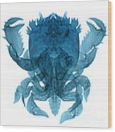 X-ray Of Deep Water Crab Wood Print