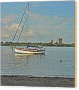 51- Phil Foster Park-singer Island Wood Print