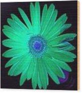 5419c4-002 Wood Print