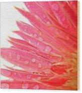 5478c1 Wood Print