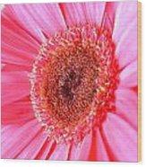 5536c1 Wood Print