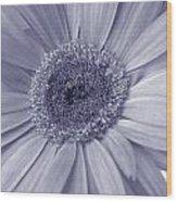 5540c8 Wood Print