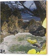 564 Cf Paradise 1 Wood Print