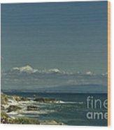 568 Cf The Lone Gull Wood Print