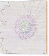 5846pn3 Wood Print