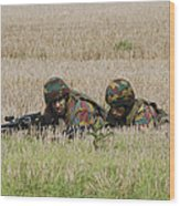 Belgian Paratroopers On Guard Wood Print
