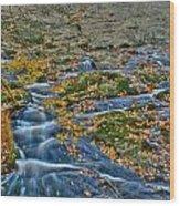 Big Hunting Creek Upstream From Cunningham Falls Wood Print